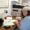 Sandra and the cats discuss paperwork